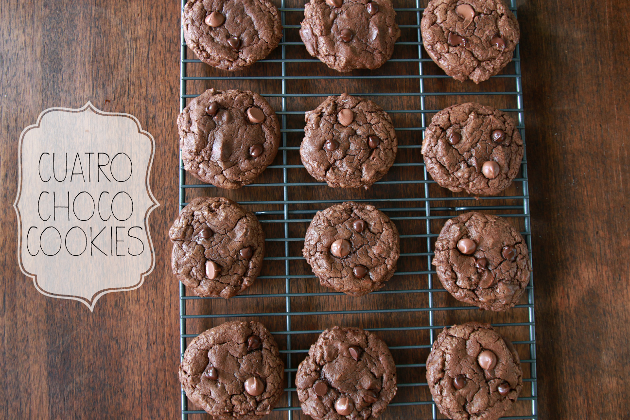 Cuatro Choco Cookies | Milk & Cereal
